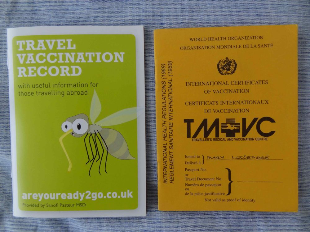 Travel Vaccination Log Books, old and new