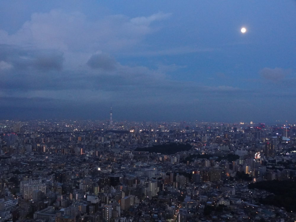 Twilight Tokyo from the Sunshine 60 Observatory, Ikebukuro
