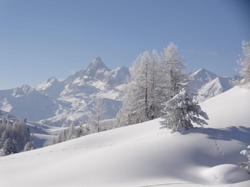 Pic de Rochebrune (3320 m)