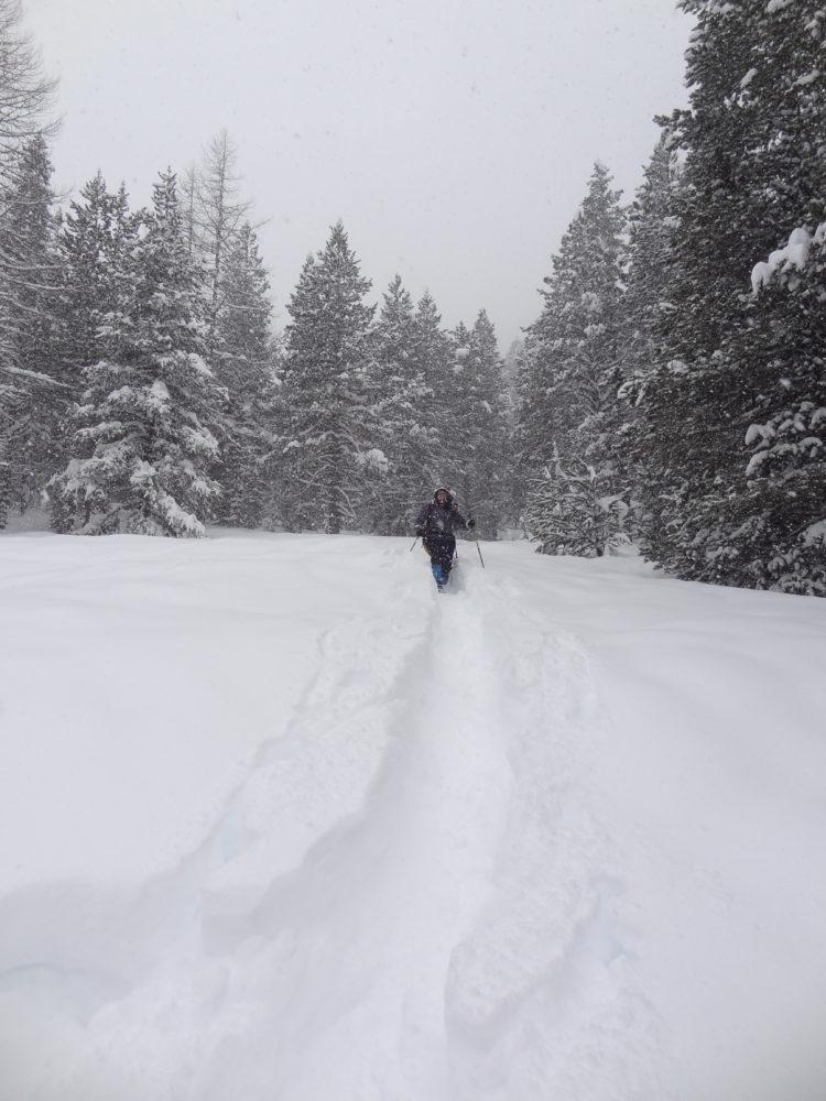 Steffi on a snowy descent, Bois des Loubatières