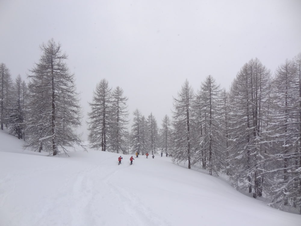 Out on the slopes below Cima del Bosco